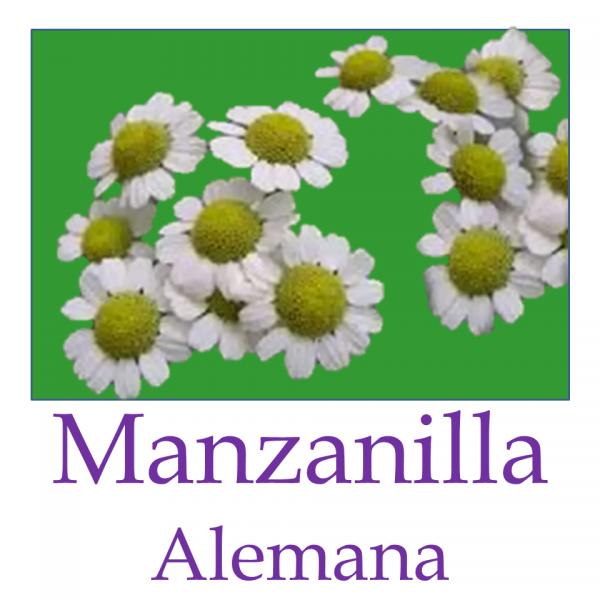 Manzanilla Alemana